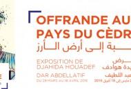web banner djahida